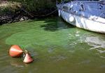 eau-cyano-bateau-150x100