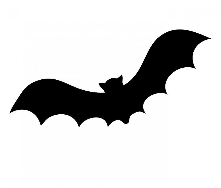 bat-220283_960_720