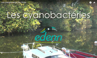 video-cyano-vignet