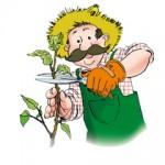 AC_JA_jardinier-300x240